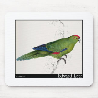 Edward Lear's Pacific Parakeet Mousepads