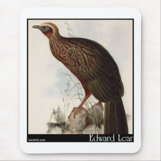 Edward Lear's Pileated Guan Mouse Pad