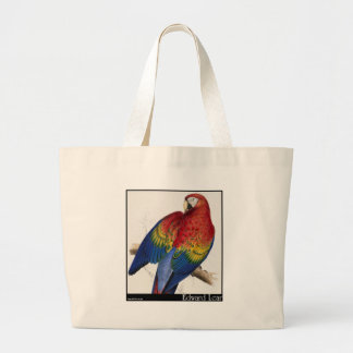 Edward Lear's Red and Yellow Macaw Large Tote Bag