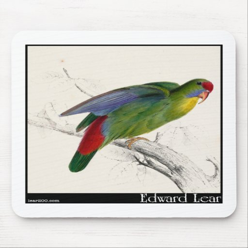 Edward Lear's Red-Fronted Parakeet Mouse Pad