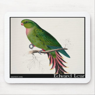 Edward Lear's Roseate Parakeet Mouse Pad
