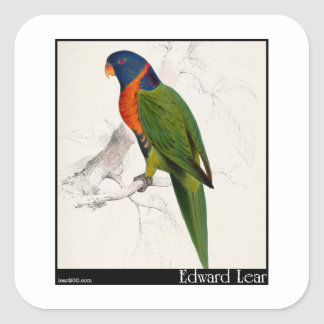 Edward Lear's Scarlet-Collared Parakeet Square Sticker