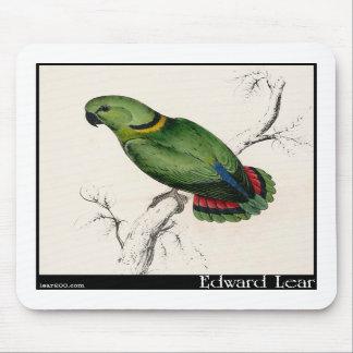 Edward Lear's Swindern's Parakeet Mousepads