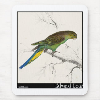 Edward Lear's Undulated Parakeet Mouse Pad