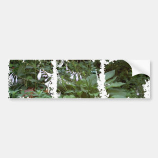 EelKat's Giant 100 Year Old Hosta Bumper Sticker