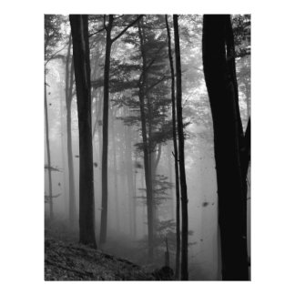 EERIE FOREST TREES LEAVES B&W 21.5 CM X 28 CM FLYER