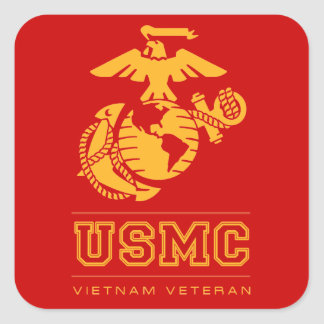 EGA Vietnam Veteran Square Sticker