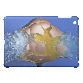 Eggceptional iPad Mini Cases