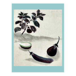 Eggplants with plant growing in the background Uki Postcard