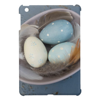 Eggs and feathers iPad mini cases