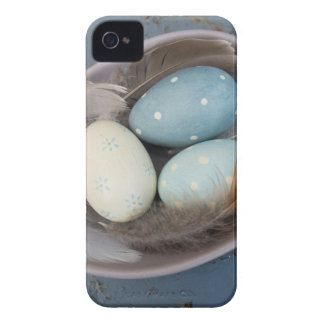 Eggs and feathers iPhone 4 cover