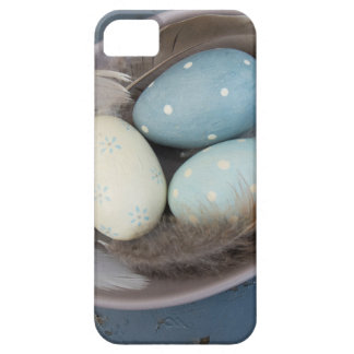 Eggs and feathers iPhone 5 cover
