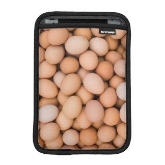 Eggs, Huaraz, Cordillera Blanca, Ancash, Peru iPad Mini Sleeve