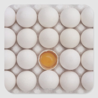 Eggs Square Sticker