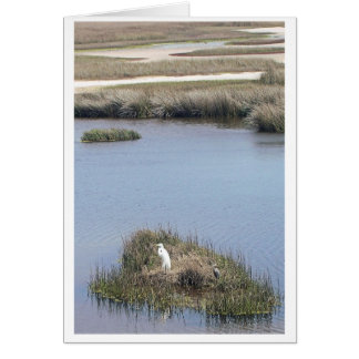 Egret At Home Card