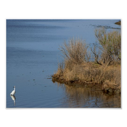 Egret at the Refuge Poster