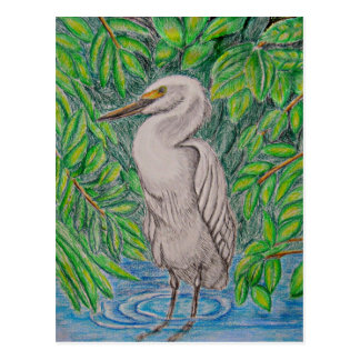 Egret bird postcard