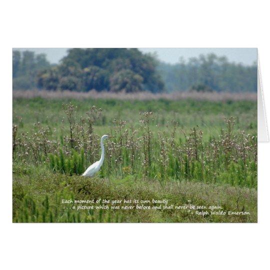 Egret in Field Of Flowers Card