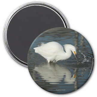 Egret in the Lake Magnet 4