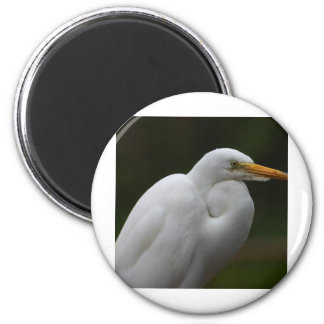 egret fridge magnet