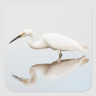Egret on still pond square sticker