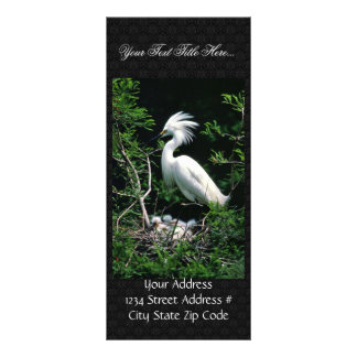Egret Rack Card Design