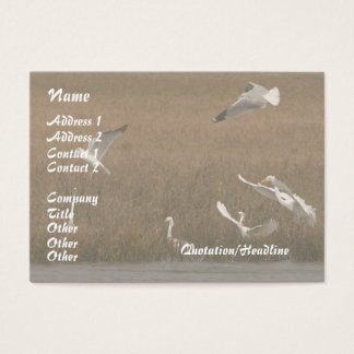 Egrets Wildlife Business Card