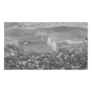 Egypt. Air view. Edfu. Temple of Horus circa 1936 Pack Of Standard Business Cards