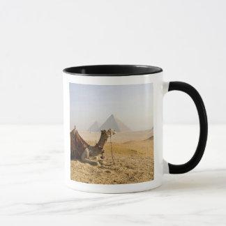 Egypt, Cairo. A lone camel gazes across the Mug
