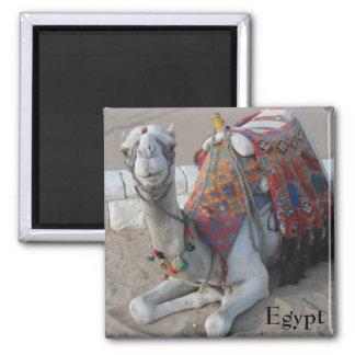 Egypt Camel Square Magnet