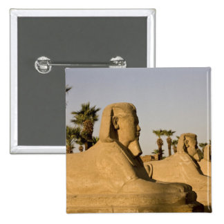 Egypt, Luxor. The Avenue of Sphinxes leads to 15 Cm Square Badge