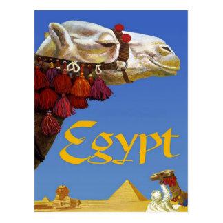 Egypt Postcard