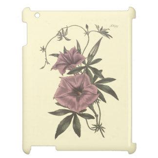 Egyptian Bindweed Botanical Illustration Case For The iPad 2 3 4