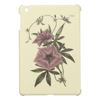 Egyptian Bindweed Botanical Illustration Cover For The iPad Mini