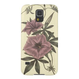 Egyptian Bindweed Botanical Illustration Galaxy S5 Cover