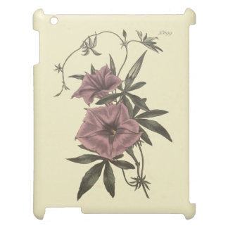 Egyptian Bindweed Botanical Illustration iPad Cases