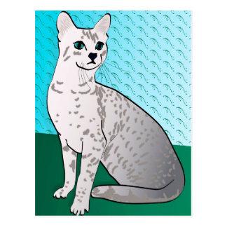 Egyptian Mau Cat - aqua background Postcard