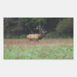 Eight 8 Point Bull Elk in Autumn Rectangular Sticker