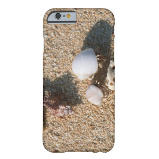 Einsiedlerkrebs Barely There iPhone 6 Case
