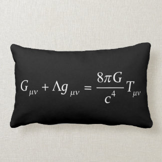 Einstein field equation lumbar cushion