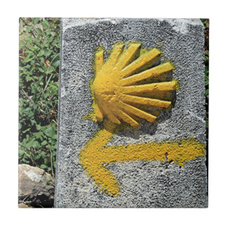 El Camino de Santiago de Compostela, Spain, shell Tile