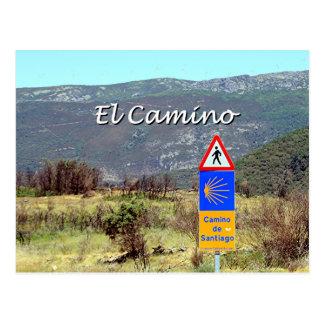 El Camino de Santiago sign (caption) Postcard