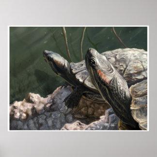 El Dorado Turtles: Sun Bath Poster