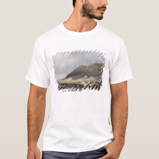 El-Mejdel  engraved by Jean Jacottet  ; T-Shirt