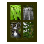 El Yunque National Rainforest, Puerto Rico Poster