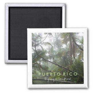 El Yunque, Puerto Rico Square Magnet