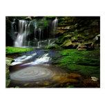 Elakala Waterfalls Swirling Pool Mossy Rocks Postcards