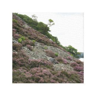 Elan Valley, Wales Canvas Print