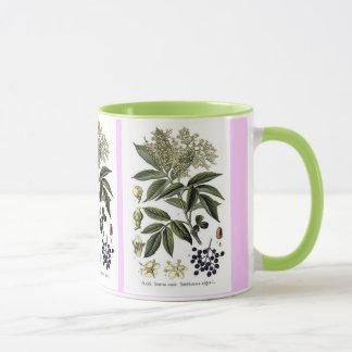 Elderberry Sambucus mug