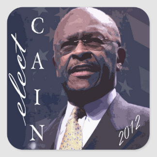 Elect Herman Cain 2012 Stickers
